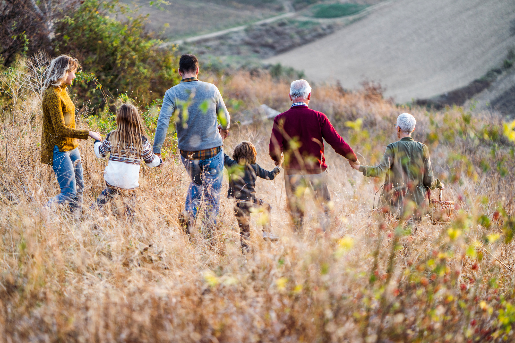 Rear view of multi-generation family holding hands while going on a picnic down the hill. Copy space.